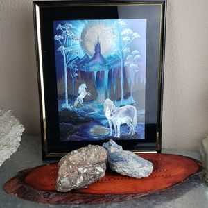 Mystical magical full moon unicorn picture  art